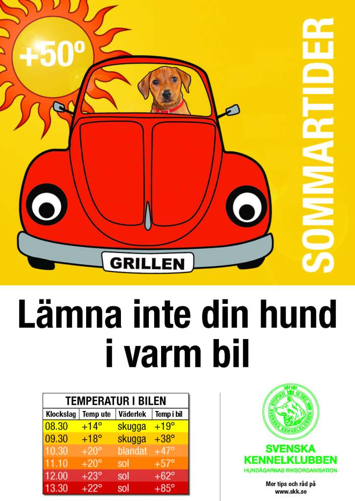Hund-i-varm-bil-2012-A3