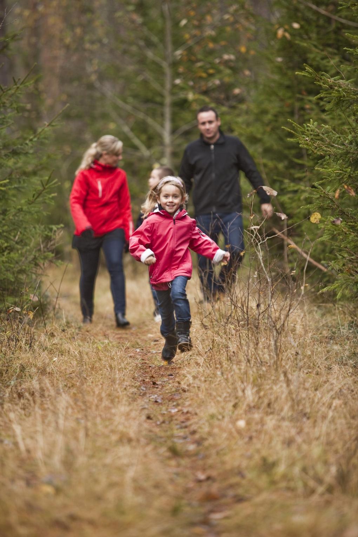 Att fira fars dag med en härlig promenad i skogen kan räcka långt!
