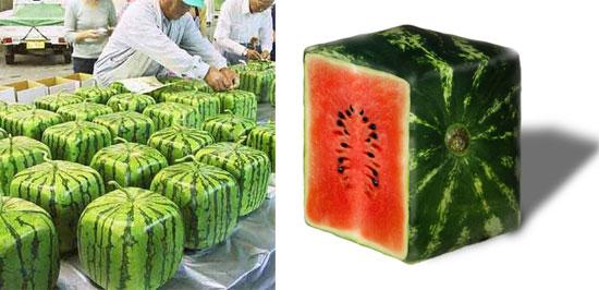vad innehåller vattenmelon