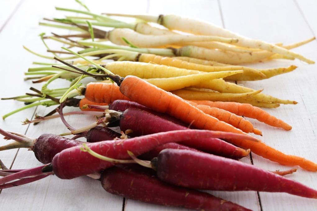 shutterstock_398475022 Morot olika färger färg vitaminer hälsosamt doktorn